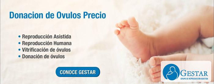 tratamiento con ovulos, vender ovulos precio, ovulos tratamiento, precio donar ovulos, precio ovodonacion, ovodonacion costos, ovodonacion costos 2017
